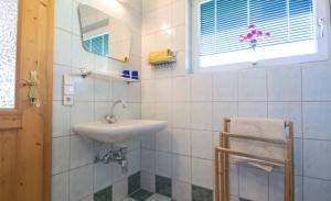 Haus Primosch - Auszug aus dem Badezimmer in der Ferienwohnung für 2-3 Personen
